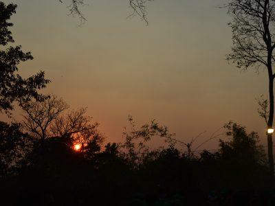 Eturunagaram Wildlife Sanctuary