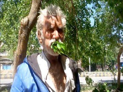 Man Eats Leaves