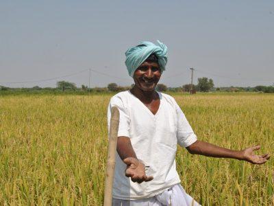 KCR farmer agri award