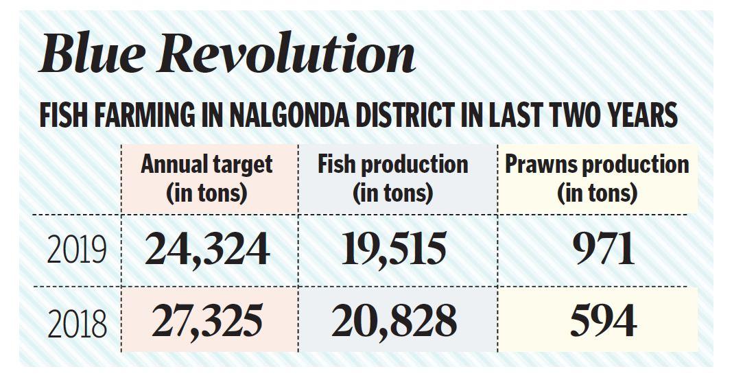Nalgonda tops in fish production in 2019