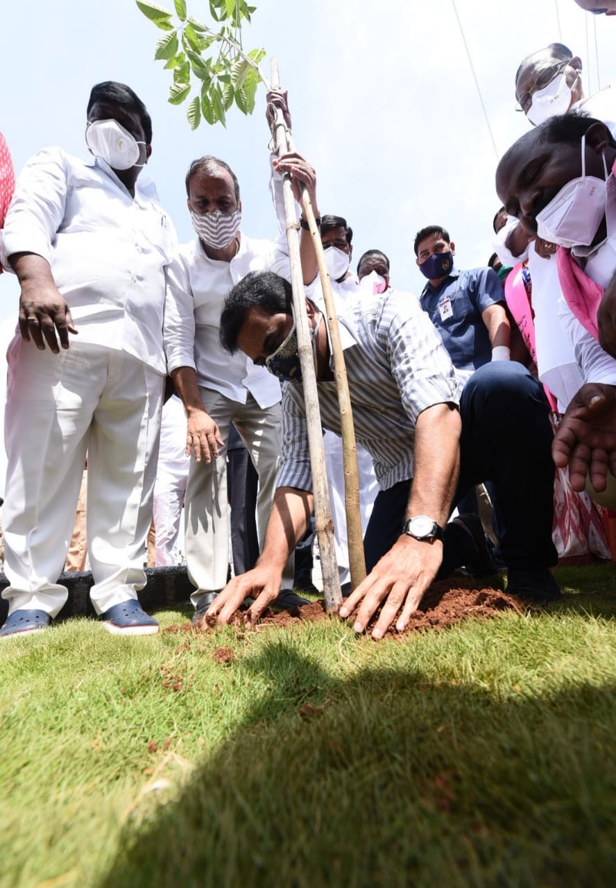 Top priority for welfare sector: KTR