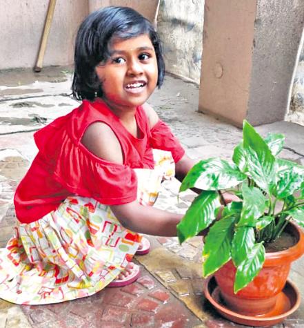 Pallavi Aware International School celebrated Green Day, Vriksh Diwas
