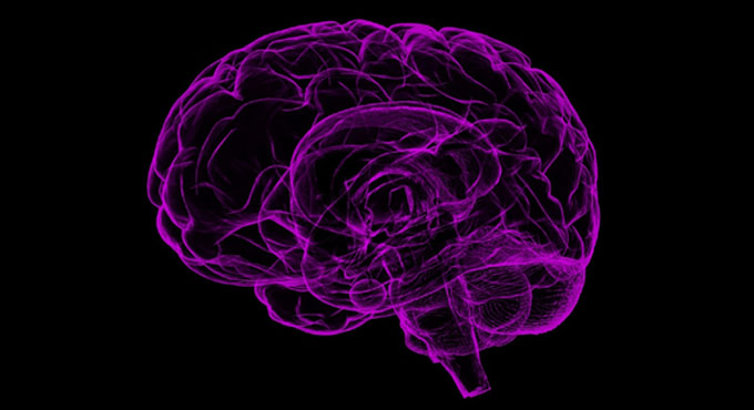 Head injuries may worsen cognitive decline decades later - Telangana Today