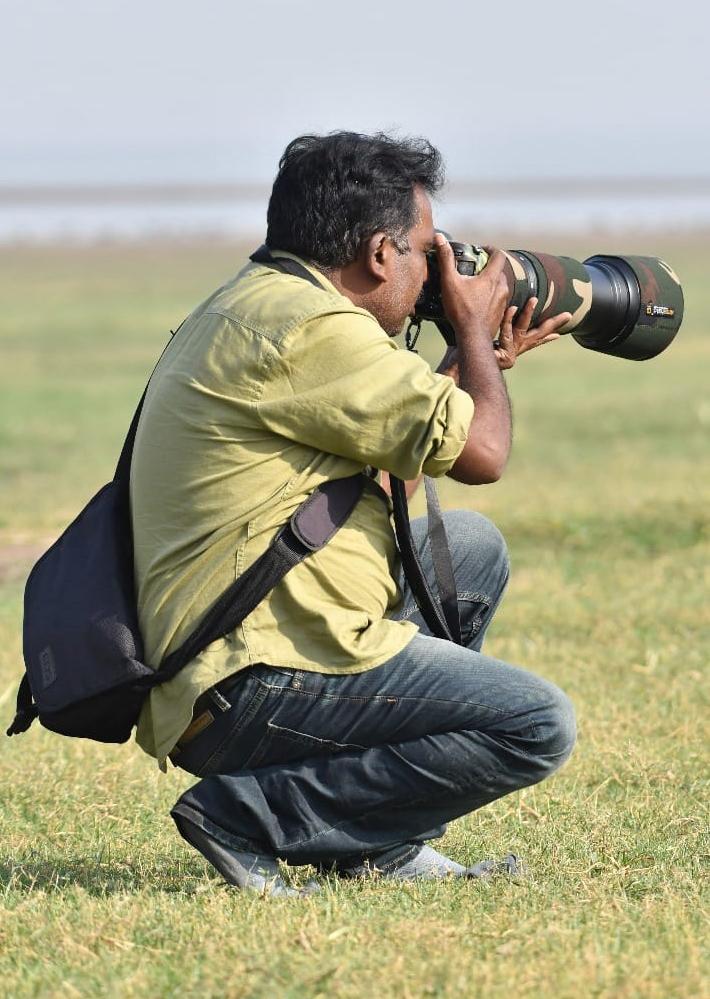 Adilabad's wildlife photographer spots rare snake eagle