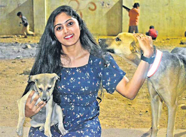 Hyderabad-based 'Collar up' to save strays